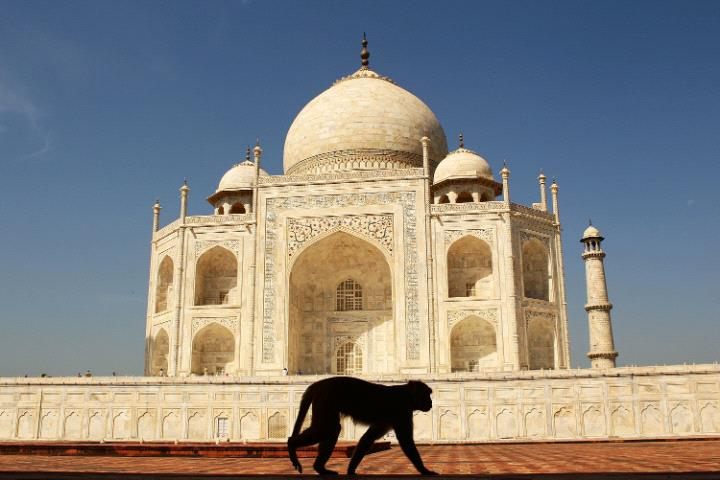 Taj Mahal, Agra-4